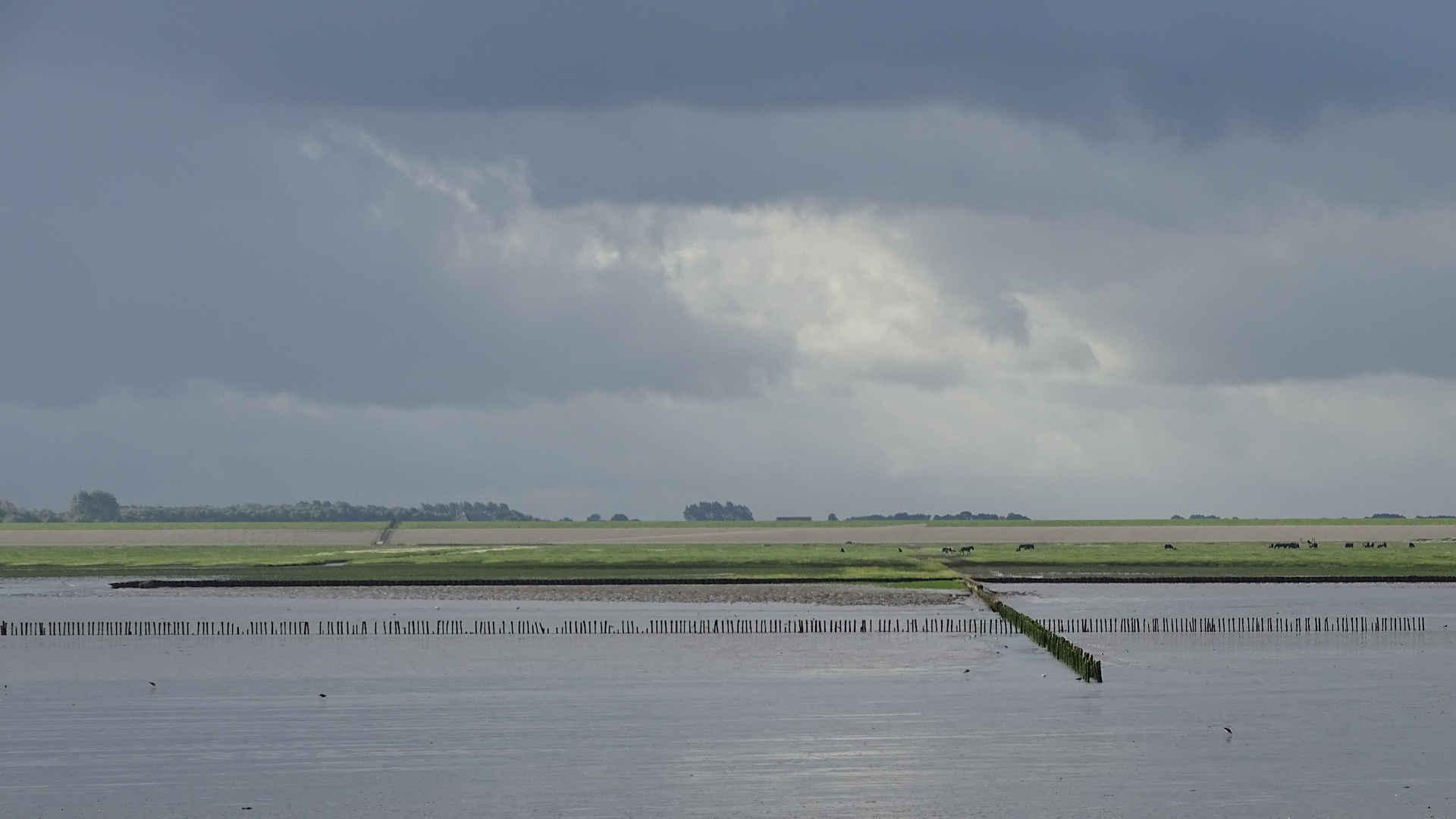 Vakantiebungalows Ameland - De Waddenzee